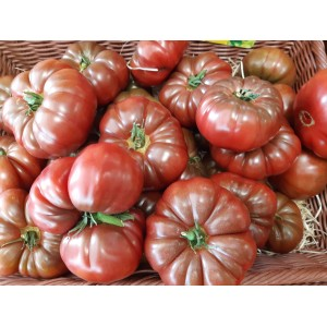tomates marquise